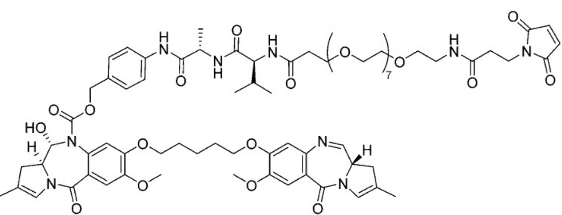 Tesirine (SG3249) is a cathepsin B-cleavable valine-alanine pyrrolobenzodiazepine (PBD) dimer and an antibody-drug conjugate (ADC) payload. Tesirine (SG3249) was designed to combine potent antitumor activity with desirable physicochemical properties such as favorable hydrophobicity and improved conjugation characteristics.