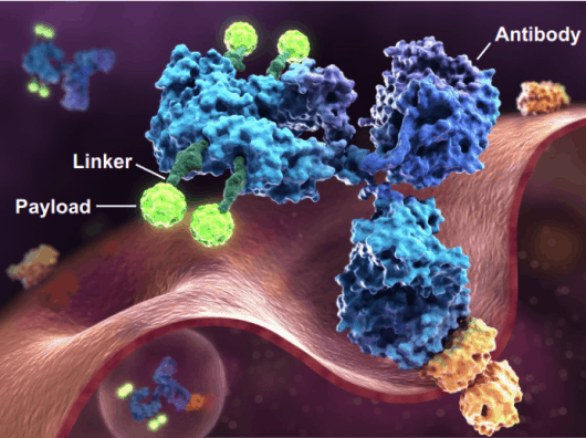 Global Market of Cancer Immunotherapy Continues to Grow