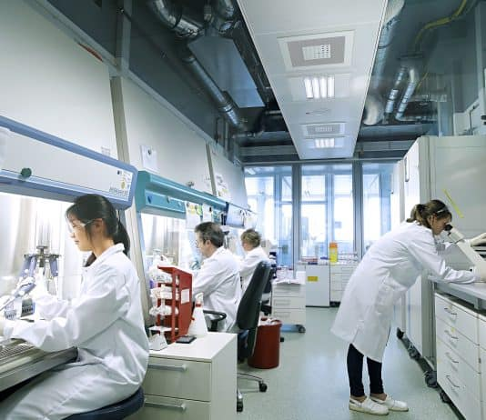 Bayer researchers in one of Bayer's cell culture laboratories in Berlin, Germany. Courtesy: Bayer